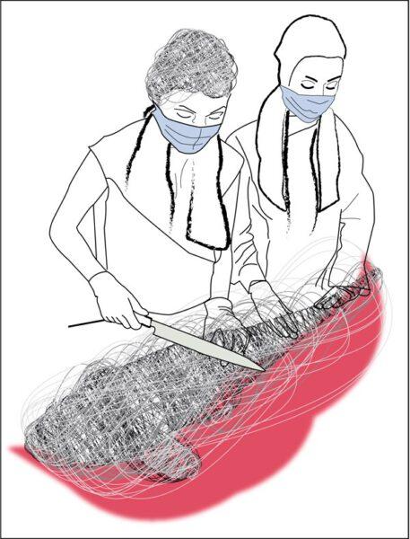 """Angelika Prinz: VirologinnenComputergrafik, DIN A4, 2020<a href=""""https://www.artists24.net/frosch.html"""">www.artists24.net/frosch.html</a>"""