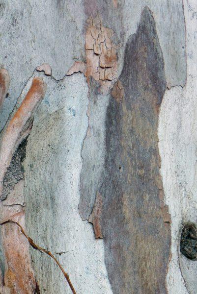 """Eva Zinke: Isolation.Fotografie, 2020<a href=""""http://www.zinkeart.de"""">www.zinkeart.de</a>"""